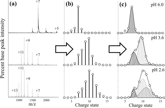 Outline of the deconvolution process of ESI-MS m/z spectra