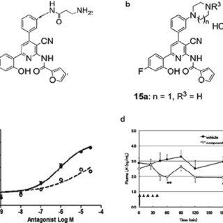 (PDF) Kisspeptin Antagonists