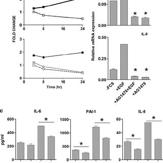 Ligand-dependent EGFR activation induced the production of