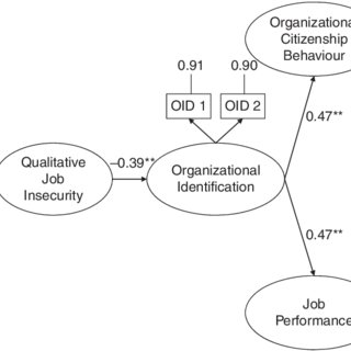 Multidimensional Model of Leadership (Chelladurai, 2007