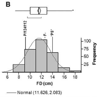(PDF) Identification and validation of QTL modifying melon