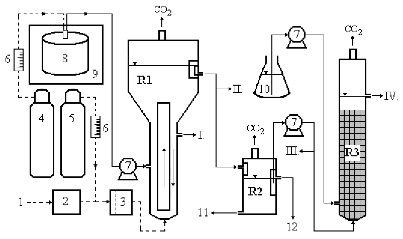 Immobilized yeast reactor system for laboratory scale
