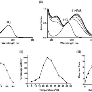 (A) Enzyme activity of hydroquinone dioxygenase assayed by
