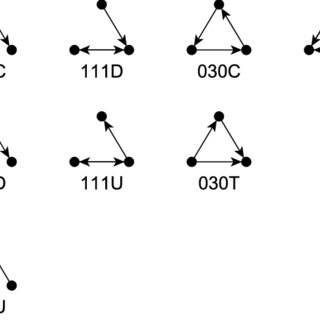 The collection of all triad types (triad census). The