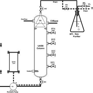 (PDF) Immobilized cement kiln dust enhances biomass and