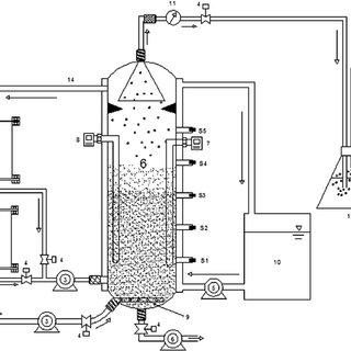 Sodium Pump Diagram Immune System Diagram Wiring Diagram