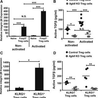 Foxp3+ Treg Cells Express the TGF-β-Activating Integrin β8