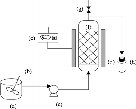 Schematic diagram of a packed-bed reactor (a) tank, (b