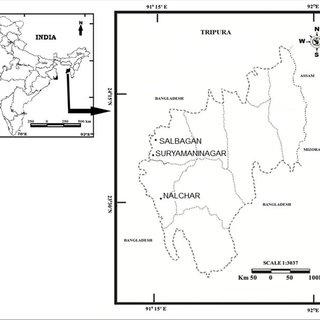 AM fungal spores. (a) Glomus sp 1. (b) Glomus aureum . (c