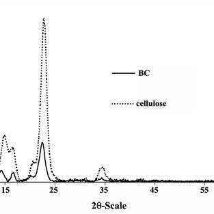 (PDF) Biotechnological production of cellulose by