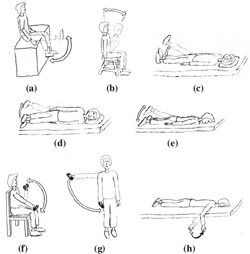 Physical therapy exercises. In each exercise, the subject