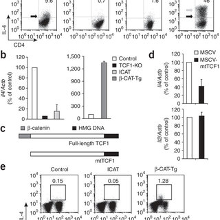 (PDF) T cell factor 1 initiates the T helper type 2 fate