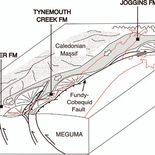 Stratigraphic relationships of Lower Pennsylvanian