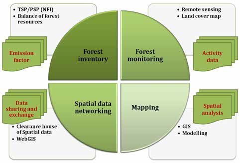 Such forests land is protected from any further depletion. 1 Directorate Of Forest Resources Inventory And Monitoring Download Scientific Diagram