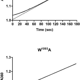 Ca 2 transport activity in the absence or presence of