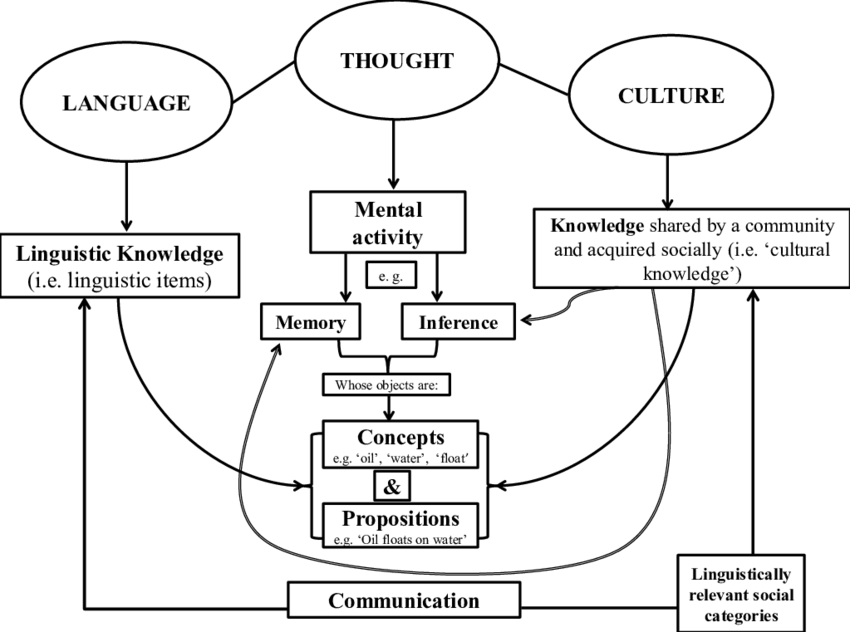 The relationship between language, thought, and culture
