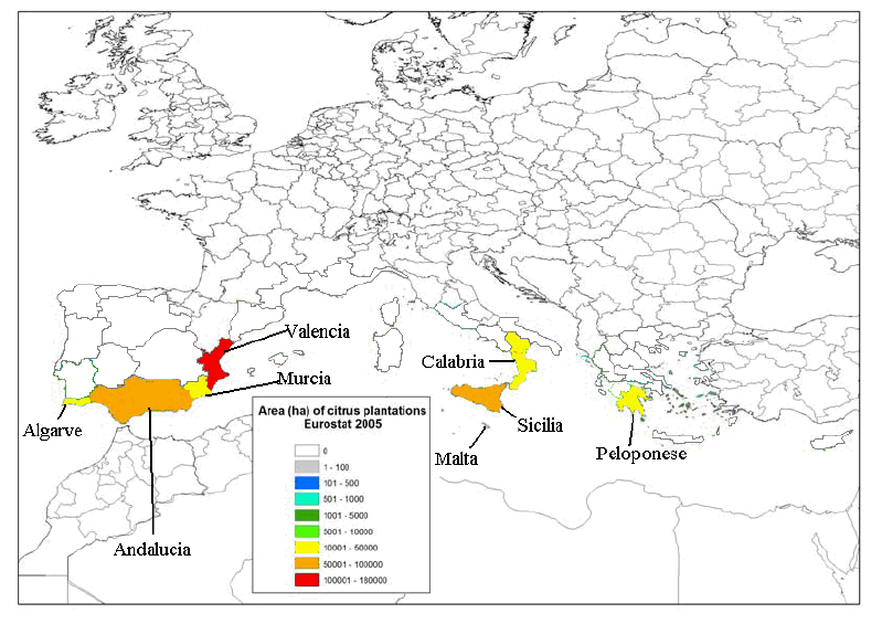 A. Distribution of major citrus growing areas in Europe