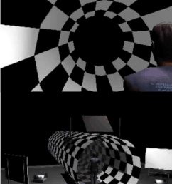 the virtual tunnel paradigm for demos go to http vision  [ 850 x 1262 Pixel ]