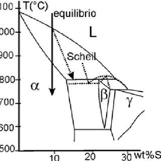 Estructura de solidificación en la aleación Cu-10%Sn