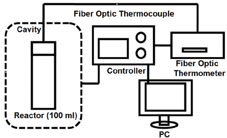 Schematic diagram of microwave experimental apparatus