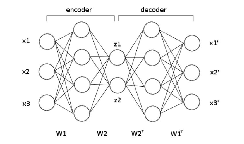 Structure of an autoencoder. The weights of the decoder