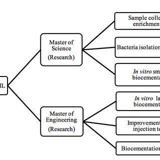 (PDF) Cross-Disciplinary Research: Developing Biocement
