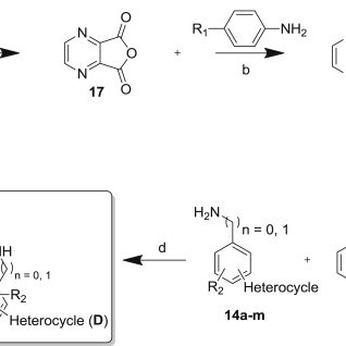 General reaction scheme for synthesis of the I45DC analogs
