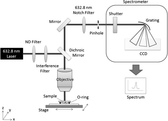 Schematic diagram of the Raman platform setup. CCD, charge