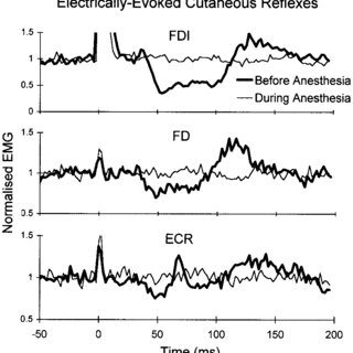 Mean rectified EMG data across 4 subjects before
