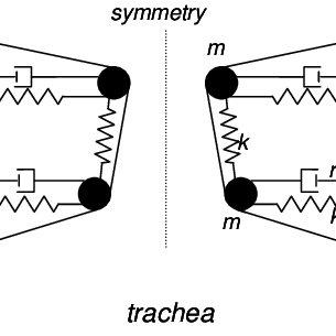 (PDF) Glottal flow through a two-mass model: Comparison of