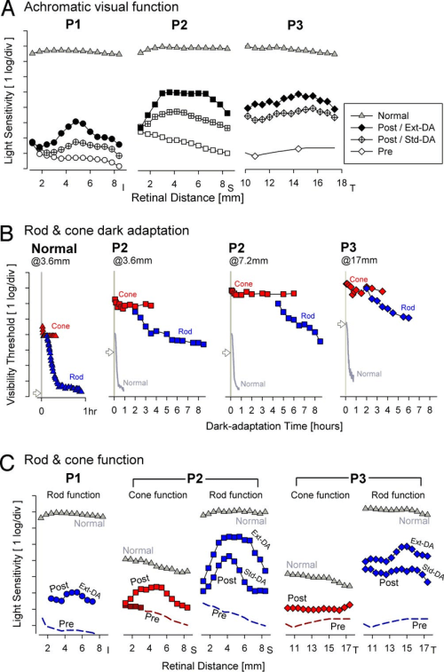 small resolution of rod and cone photoreceptor mediated visual function across the retinal region of study eyes showing biological activity a the magnitude of the biological