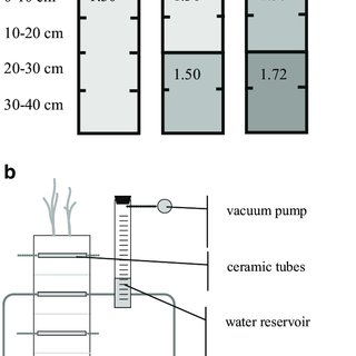(PDF) The effect of compacted soil layers on vertical root