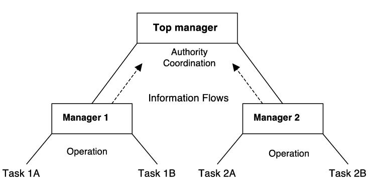U-Form Organization of a Centralized Public Service ...