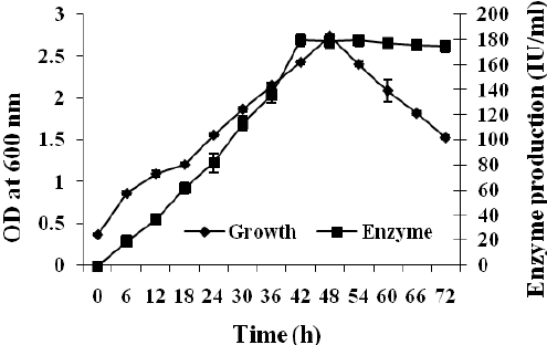 Bacterial growth vs. enzyme production. Results represent