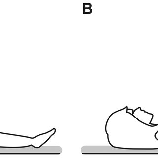 (PDF) Effect of Passive Leg Raising on Systemic