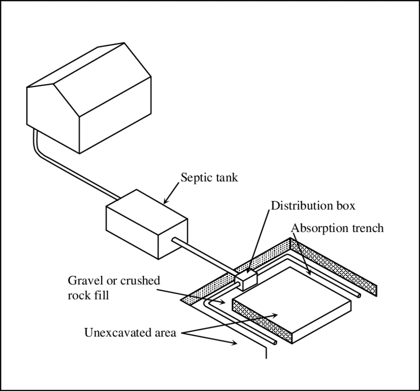 Typical septic tank-effluent disposal area layout (adapted