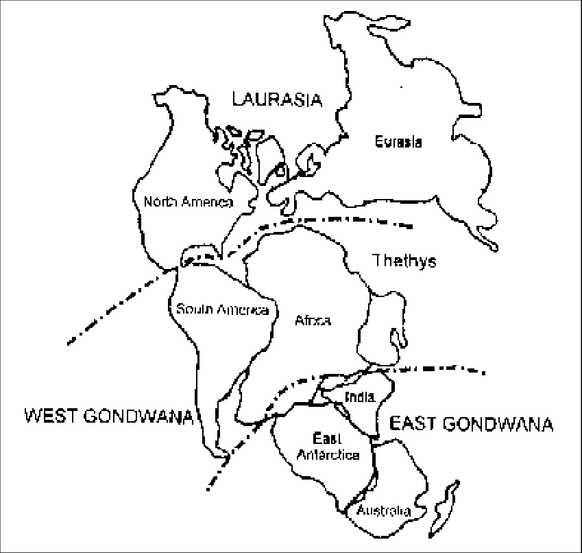 An outline of the Pangea supercontinent indicating the