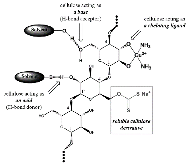 The Role of Cellulose in Solution (adapted from [40 ...