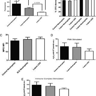 (PDF) A Distinct Subset of Proinflammatory Neutrophils