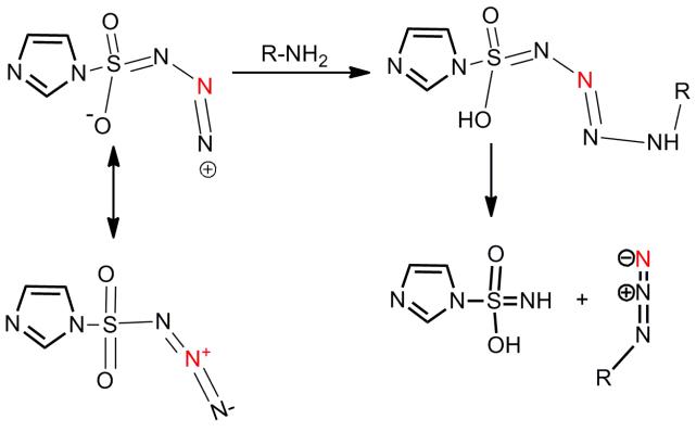 Mechanistic Studies on the Diazo Transfer Reaction (PDF