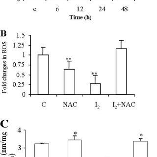 (PDF) Molecular Iodine Induces Caspase-independent