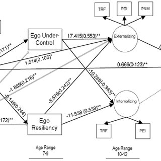 Structural Model of Relations between Child Maltreatment