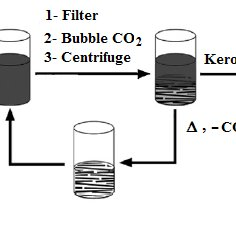 (PDF) Extraction of Kerogen from Oil Shale using Mixed