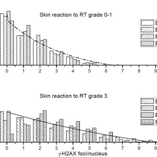 Effect of clinical radiation on the expression of γ-H2AX