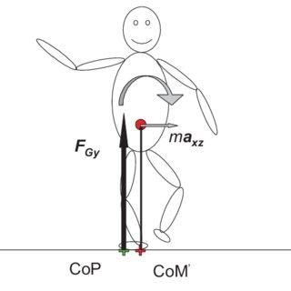 (PDF) Mechanics of Balance A tutorial about the