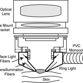 (PDF) Monte Carlo Simulation of Light-Tissue Interaction
