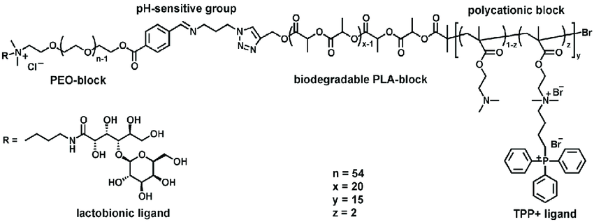 Chemical structure of the multifunctional PEO-b-PLA-b