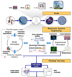 a bioprocess systems engineering framework for model development in biological systems  [ 850 x 1001 Pixel ]