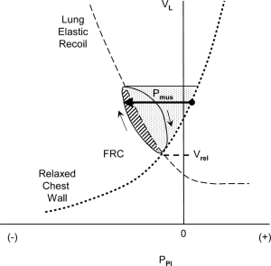 Campbell diagram in a normal subject showing the volume of