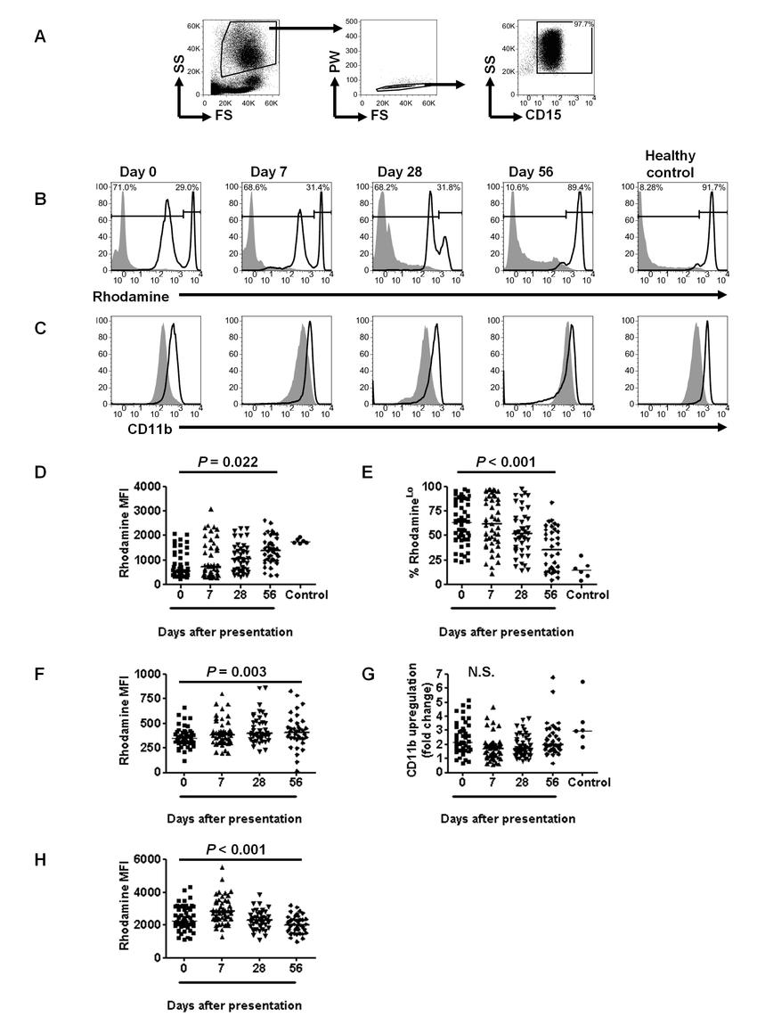 hight resolution of p falciparum malaria causes prolonged impairment of the neutrophil oxidative burst a